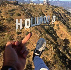 Toutouni et hollywood