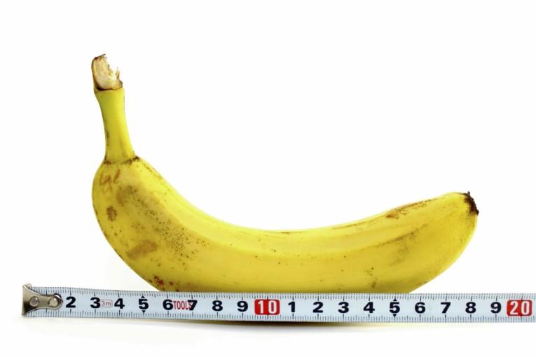 taille penis moyen